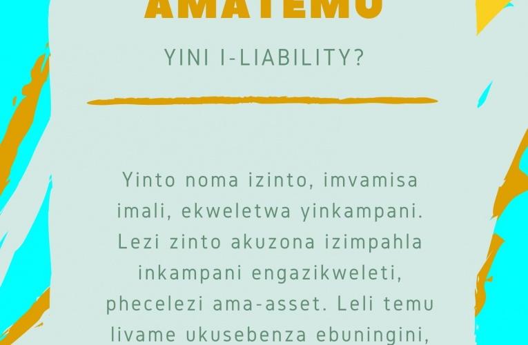 YINI I-LIABILITY?